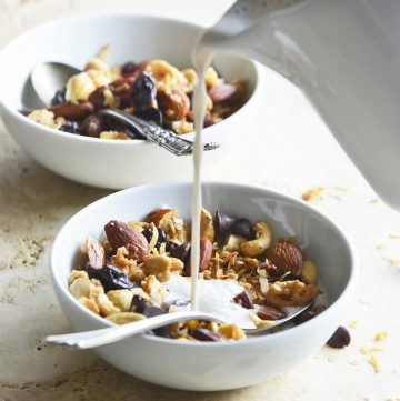 Low Carb Grain Free Granola Recipe with Cherries, Coconut, and Chocolate Chips